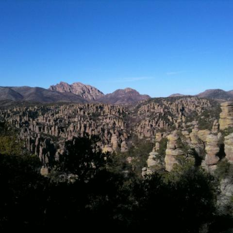 Rhyolite hoodoos in the Chiricahua Mountains