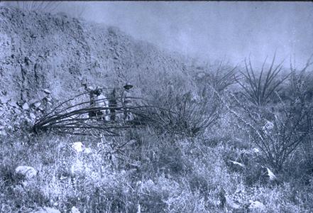 1887 Fault scarp on Pitaycachi Fault, south of Douglas, AZ, in Sonora Mexico