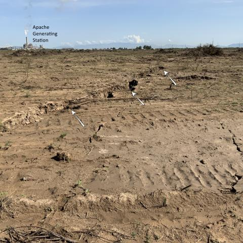 Earth fissure in Cochise County, August 2021