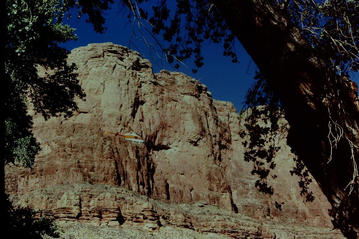Redwall Limestone