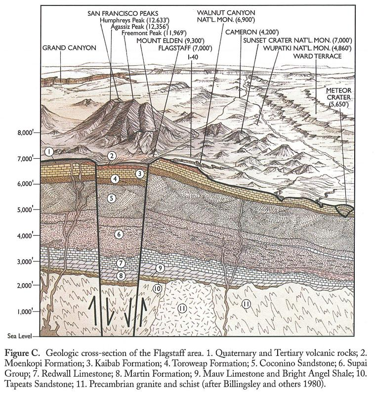 Geologic cross section of the Flagstaff area, northern ...